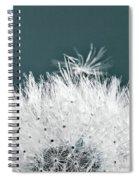 Close-up Dandelion Seeds, Prague, Czech Spiral Notebook