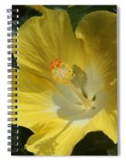Close Up Of A Hibiscus...   # Spiral Notebook