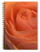Close Up Of A Rose Bud Spiral Notebook