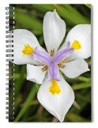 Close Up Of An Iris Spiral Notebook