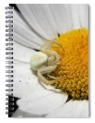 Close-up Of Crab Spider Spiral Notebook