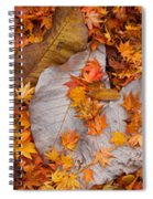 Close-up Of Fallen Maple Leaves Spiral Notebook