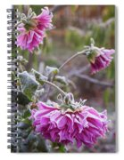 Close-up Of Flowers Covered By Frost Spiral Notebook