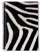 Close-up Of Greveys Zebra Stripes Spiral Notebook