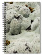 Close Up Of Lichens Commonly Called Rock Moss Spiral Notebook