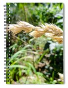 Close-up Of Prairie Grass Spiral Notebook
