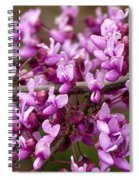 Close-up Of Redbud Tree Blossoms Spiral Notebook