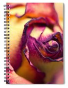 Close Up Of The Dry Rose Spiral Notebook