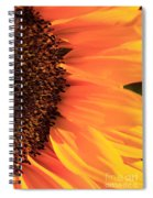 Close Up Of The Florets And Petals Of A Sunflower Spiral Notebook