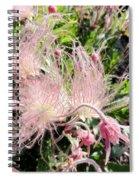 Close-up Of The Prairie Smoke Wildflower Spiral Notebook