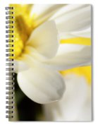 Close Up Of White Daisy Spiral Notebook