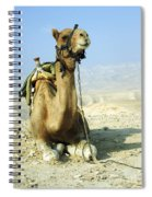 Closeup Of A Camel Spiral Notebook