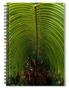 Closeup Of A Palm Tree Leaf Spiral Notebook