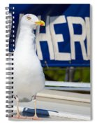 Closeup Of A Seagull On A Fisher Boat  Spiral Notebook