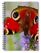 Closeup Of An European Peacock Butterfly  Spiral Notebook