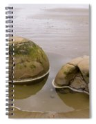 Closeup Of Famous Spherical Moeraki Boulders In Nz Spiral Notebook