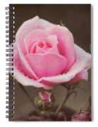 Clothed In Natures Jewels Spiral Notebook