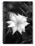 Cloud Nine Spiral Notebook