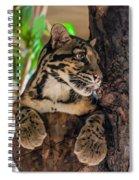 Clouded Leopard 2 Spiral Notebook