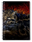 Clouded Leopard Two Spiral Notebook