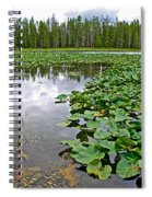 Clouds Among The Lily Pads In Swan Lake In Grand Teton National Park-wyoming  Spiral Notebook