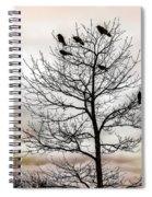 Cloudy Day Blackbirds Spiral Notebook
