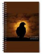 Cloudy Evening Spiral Notebook