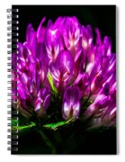 Clover Flower Spiral Notebook