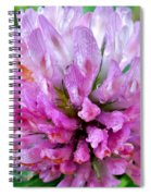 Clover Flower Upclose Spiral Notebook