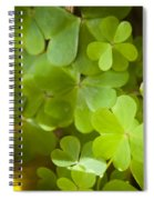 Clover Spiral Notebook