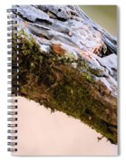 Club Of Moss Abstract Spiral Notebook