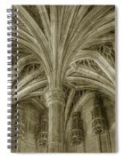 Cluny Museum Ceiling Detail Spiral Notebook