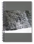 Coal Miner's Trail Spiral Notebook