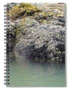 Coast Ecosystems Spiral Notebook