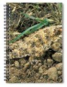 Coast Horned Lizard Spiral Notebook