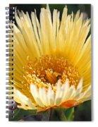 Coastal Bloom II Spiral Notebook