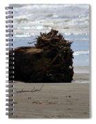 Coastal Driftwood Spiral Notebook
