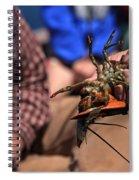 Coastal Maine Is Lobster Spiral Notebook