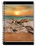 Coastal Morning  Spiral Notebook