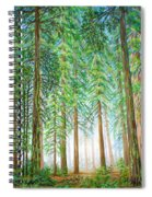 Coastal Redwoods Spiral Notebook
