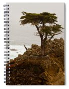 Coastline Cypress Spiral Notebook