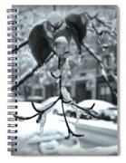 Coat Of Ice - Winter In New York Spiral Notebook