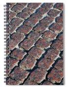 Cobblestones Spiral Notebook