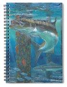 Cobia Strike In0024 Spiral Notebook