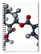 Cocaine Molecular Model Spiral Notebook