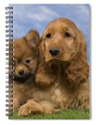 Cocker Spaniel And Pomeranian Spiral Notebook