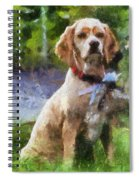 Cocker Spaniel Outside 04 Spiral Notebook