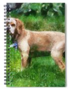 Cocker Spaniel Outside 07 Spiral Notebook