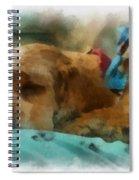 Cocker Spaniel Photo Art 06 Spiral Notebook