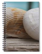 Cockle And Sea Urchin Spiral Notebook
